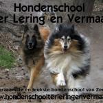 Hondenschool Ter Lering en Vermaak, Domburg, Zeeland