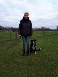 Mariska met Buddy, Border collie, aandacht & fun , omheind veld